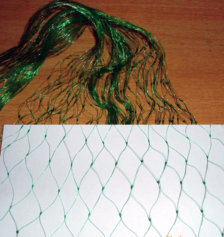 HDPE Plastic Anti Bird Net, Birding Netting Protection Fruits Trees with UV Treatment