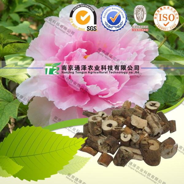 Pure 98% Peony Bark Extract Paeonol