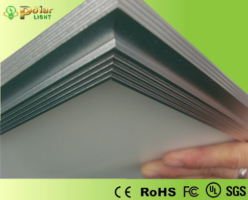 0/1-10V LED Panel Light with Ies Files (PO-PL6060)