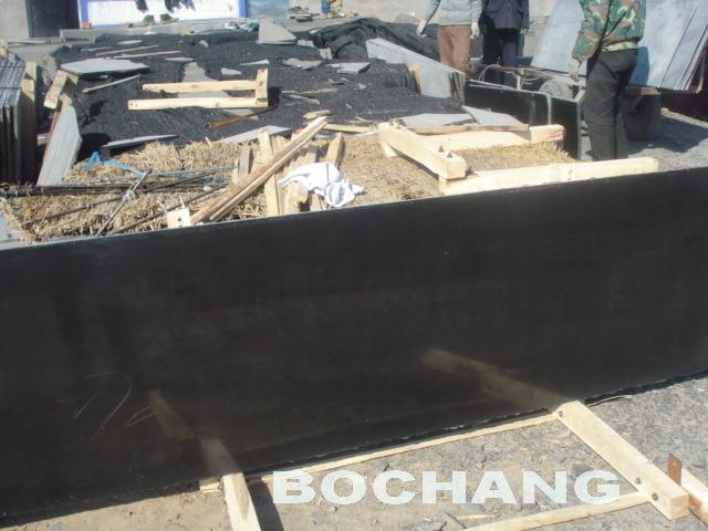 Mongolia Black Granite Stone Tile/Slab for Floor and Wall
