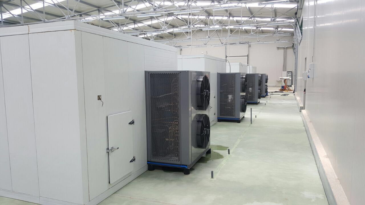 Good Performance Fish Drying Machine with Patent Technology