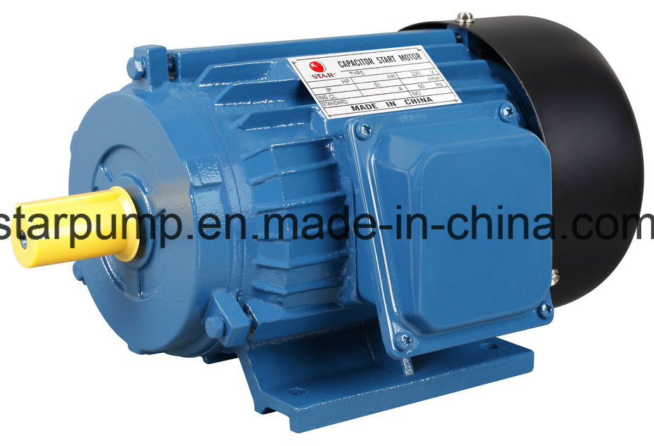 Y Series Iron Casting Three Phase Electric Motor IEC Standard