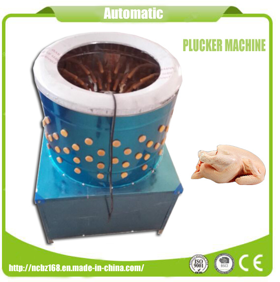 Chicken Scalder & Plucker Machine for Sale/Mini Plucker