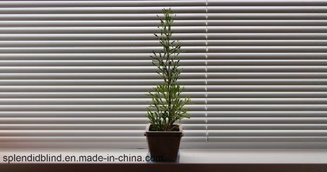 Aluminum Mini Window Blinds Quality Windows Blinds
