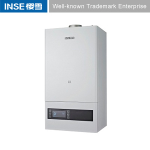 Wall Mounted Gas Boiler for Iran Market L1p20-J1302