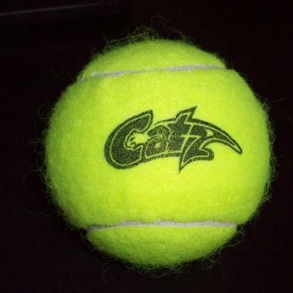 Tennis Ball, Wool Felt, for Professional Play