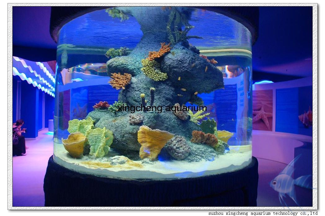 china round fish tank for hot mall photos pictures