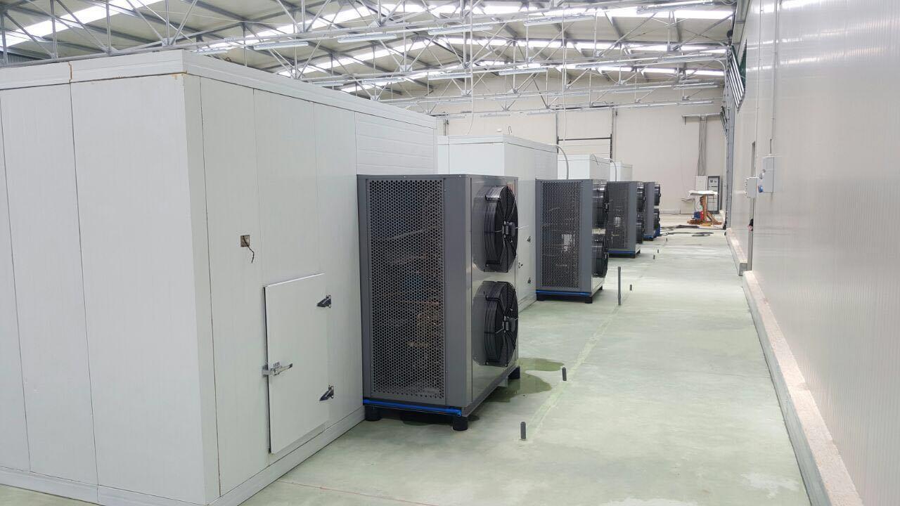 1500 Kg Per Batch Drying Capacity Tomato Drying Equipment