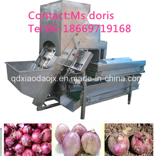 Industrial Commercial Onion Skin Peeling Machine