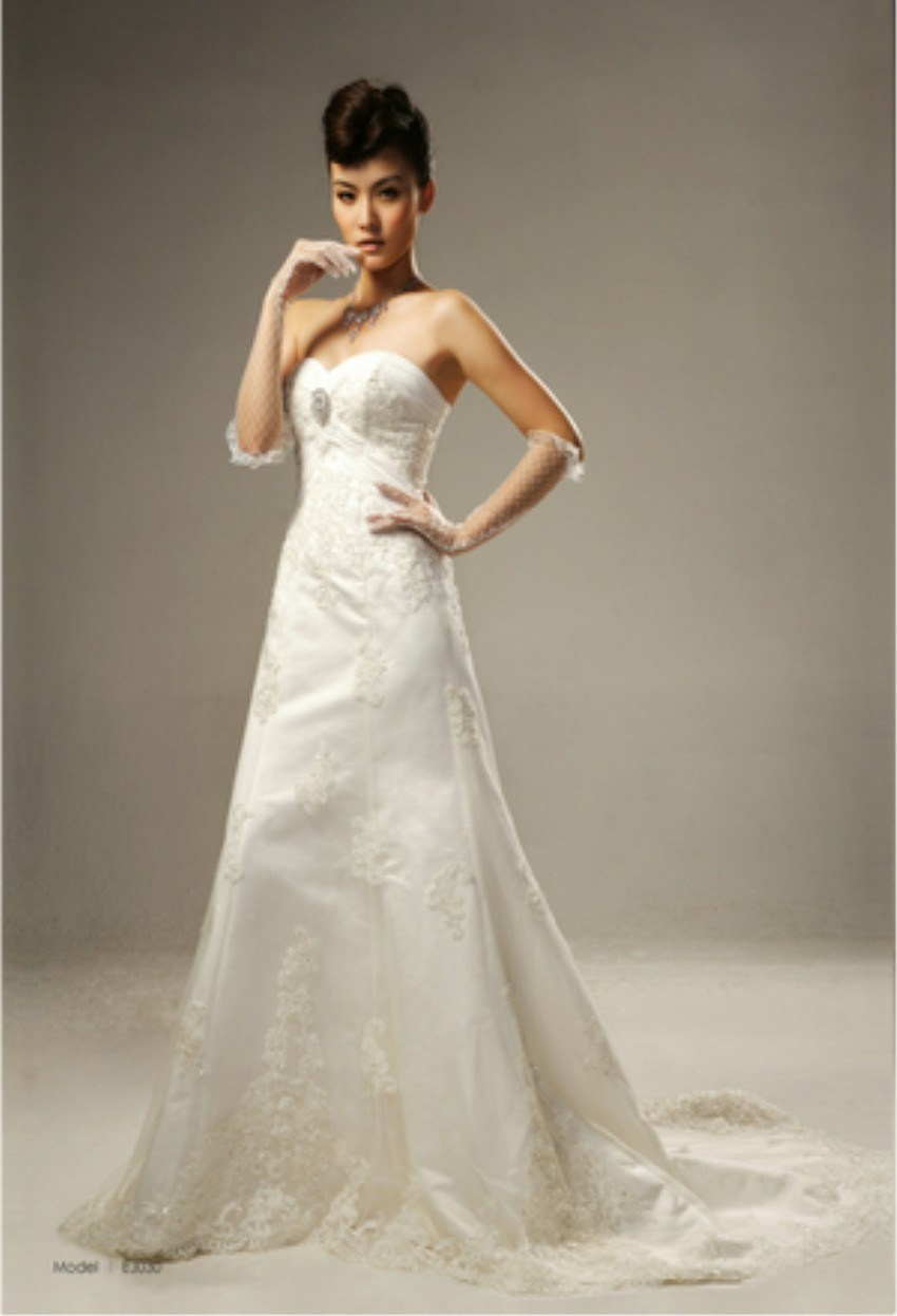 China 2010 most popular elegant a line wedding dress for Most elegant wedding dresses