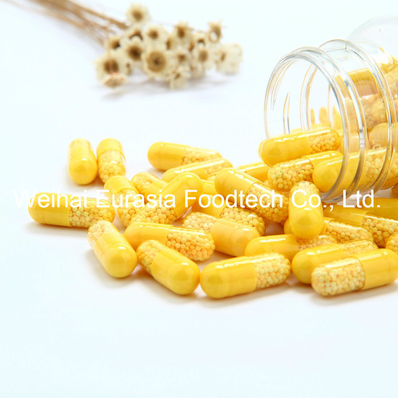 Vitamin C and Zinc Capsules with Sustained-Release/Retard Pellets