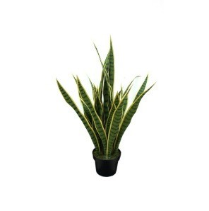 Artificial Plants and Flowers of Sancevieria