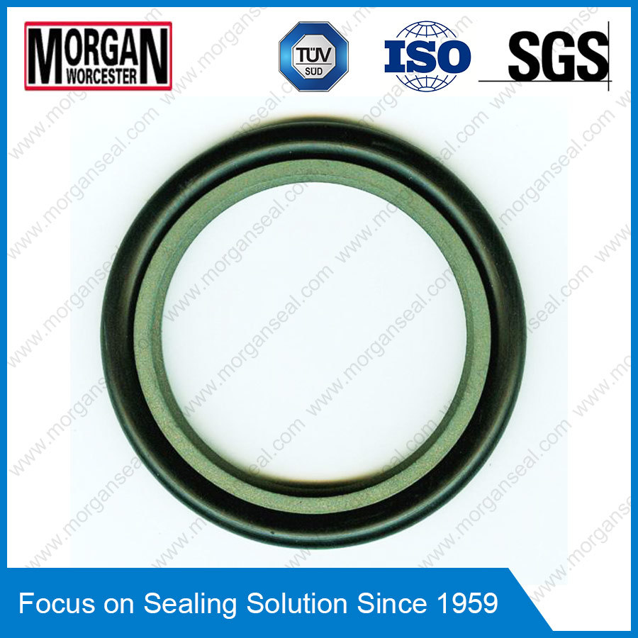 Rg4/on Profile Hydraulic Cylinder Piston Rod Seal Ring