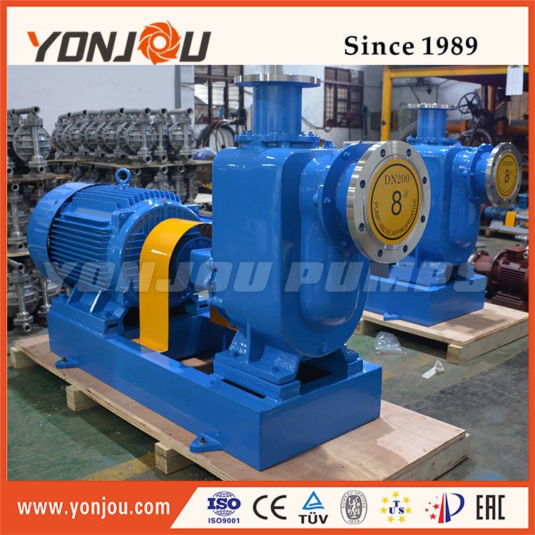 Zw Sewage Pump with Solid 10mm, Self-Suction Pump