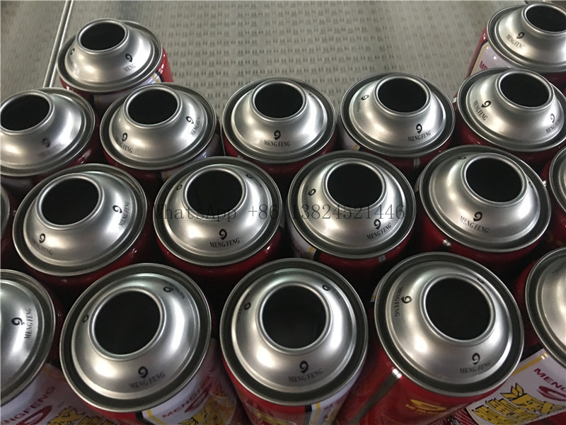 Empty Aerosol Can for Insect Killer