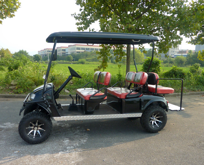250 Cc Gasoline Powered Golf Hunting Car with 4+2 Seats