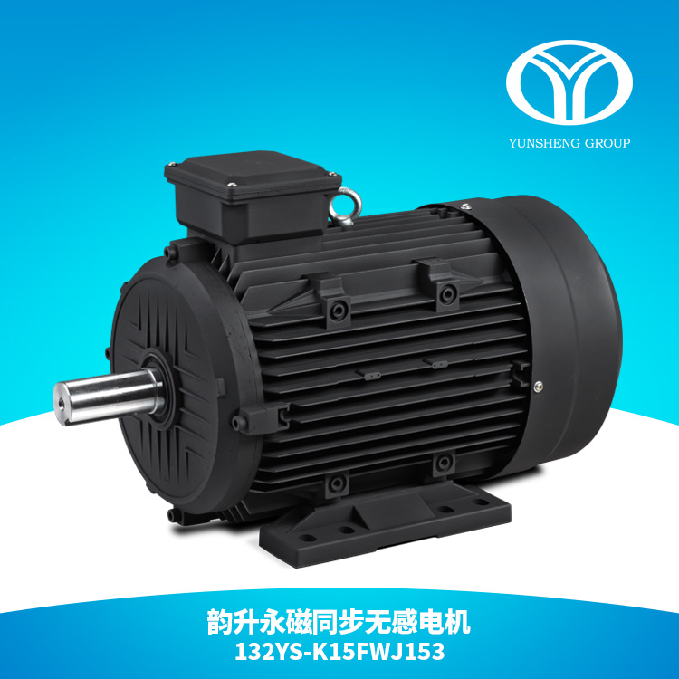 AC Permanent Magnet Synchronous Motor 15kw 1500rpm