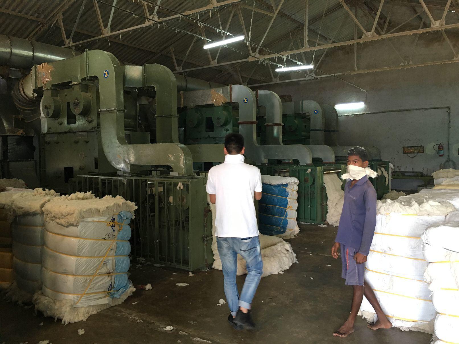 Cotton Waste Delinter (MTR288) Linters