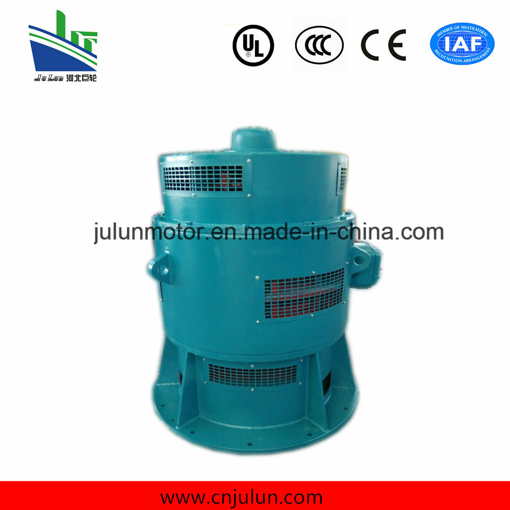 Vertical Low Voltage Motor 3-Phase Asynchronous Motors AC Motor Induction Electrical Motor Special for Axial Flow Pump