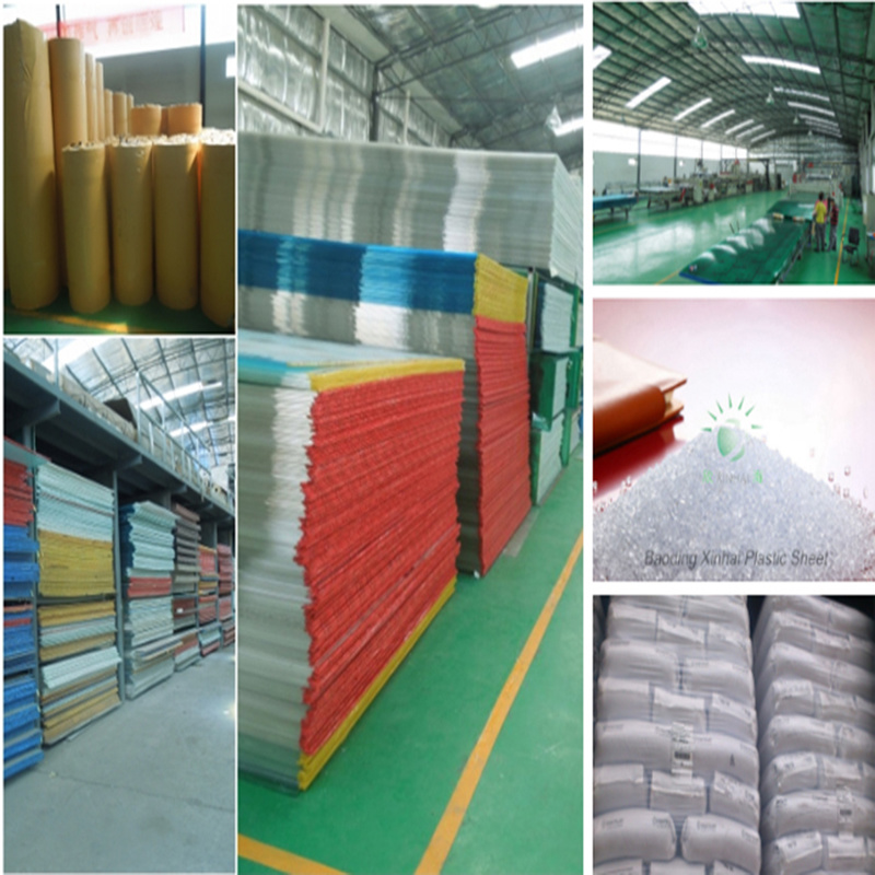 Polycarbonate Anti-Scratch Hollow Twin Wall Sheet for 100% Bayer Material