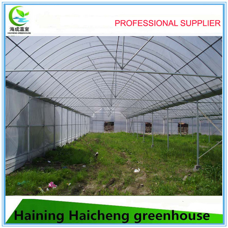 Multi Span Greenhouse for Flower Planting