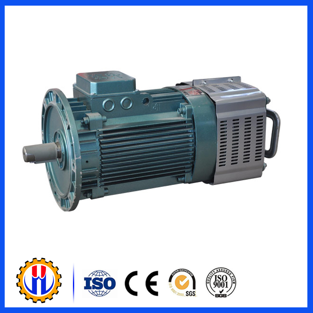 Construction Hoist Motor Used for Hoist, Reducer, Electric Motor