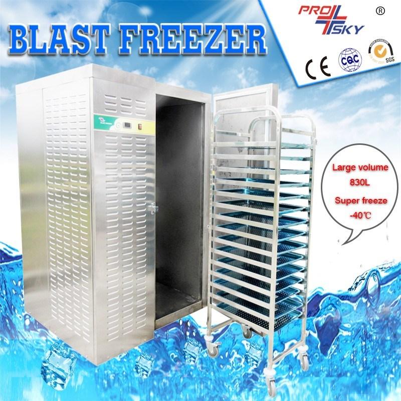 Fish Blast Freezer/Instant Freeze Machine