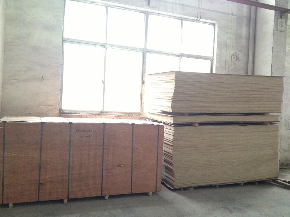 Plywood for Yacht Building (size 1220*2440)