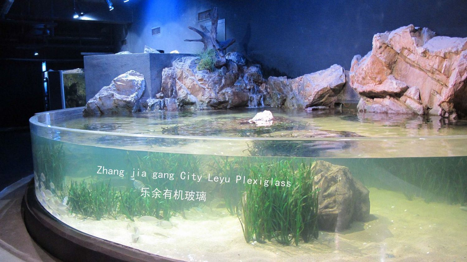 ... Fish Tank for Tourists - China Custom Acrylic Fish Tank, Acrylic Fish