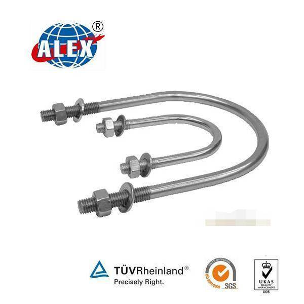 Stainless Steel AISI 304/316 OEM U Bolt with Washer Plate and Nuts