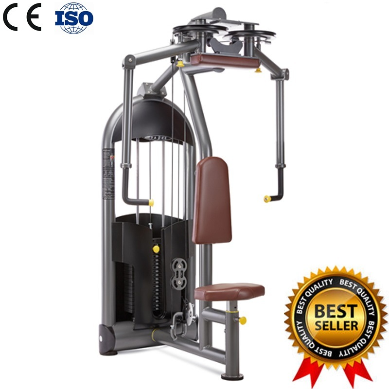 Gym Fitness Equipment Rear Deltoid Made in China