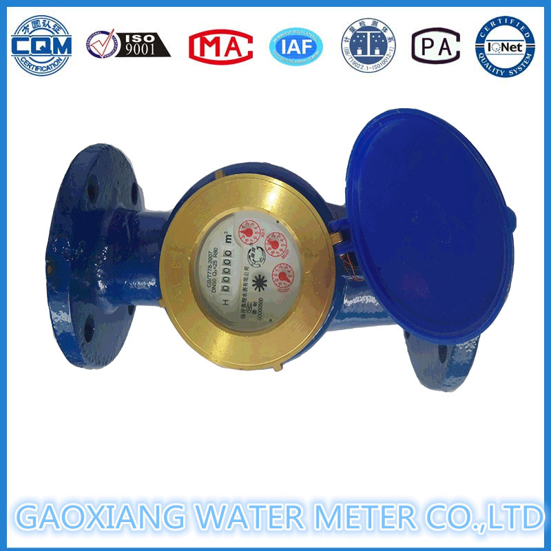 Large-Diameter Flange Mechanical Water Meter