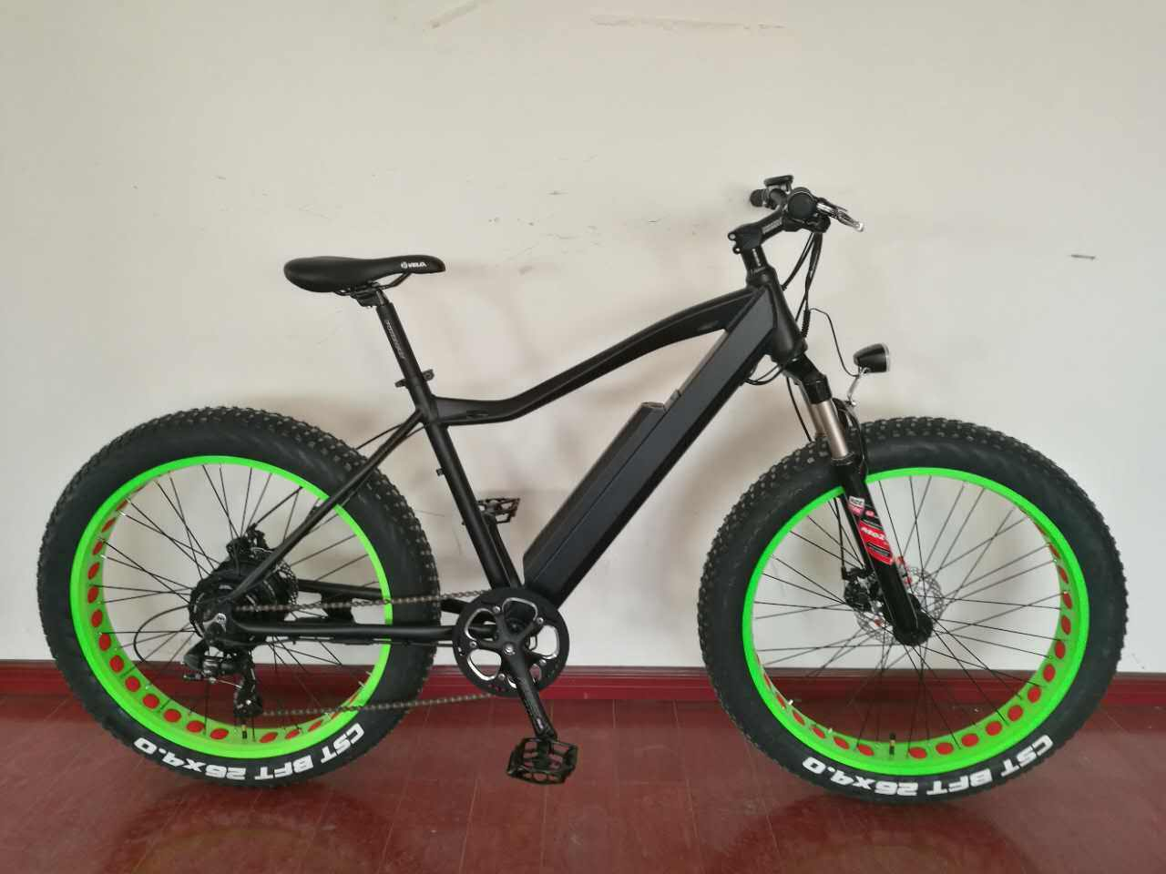 Electric Bike Bicycle with Wide Tire Snow Bike Beach Bike