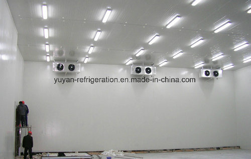 Cold Storage for Flower Planting