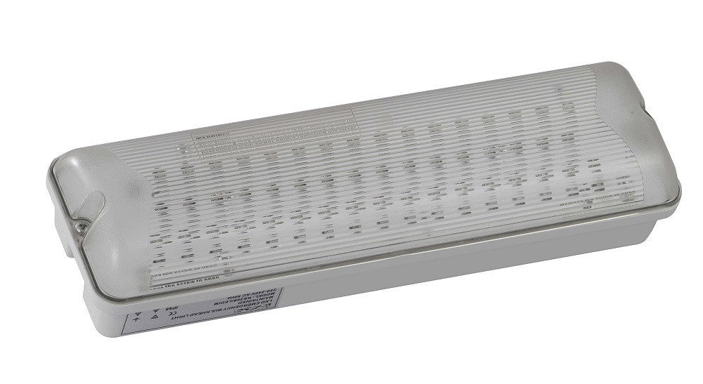 European Standard Hot Sale LED Emergency Light (PR208/LED/M)
