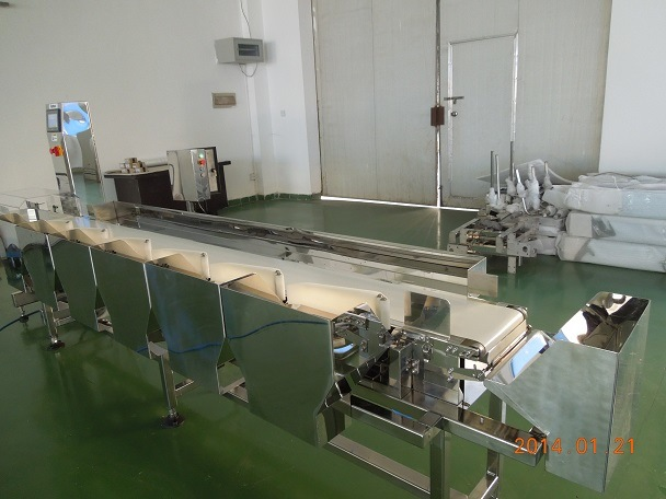 Automated Weight Grading Machine with 4 Channel Outlets for Dead Fish