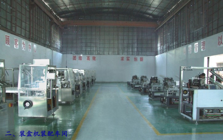 Automatic Cartoning Machine (XWZ-200)