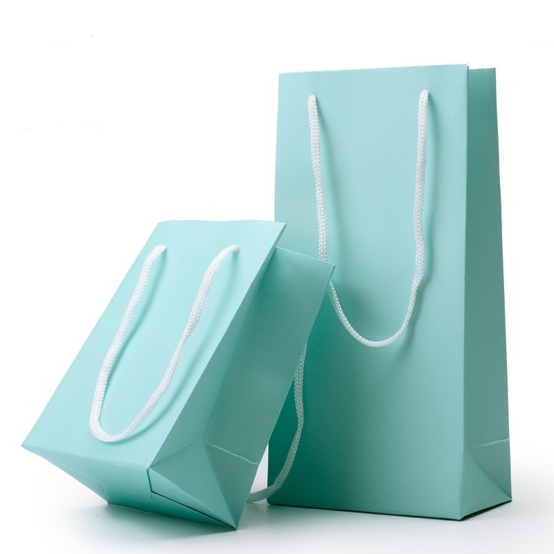 Hot Sale Custom Professional Paper Gift Bags for Shopping (FLP-8916)
