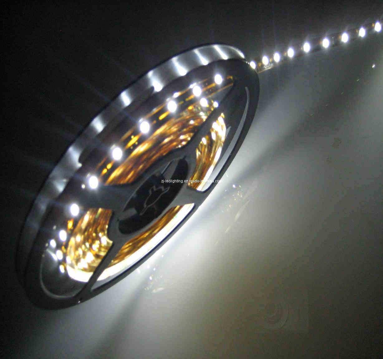 China LED Ribbon LED Flexible Ribbon LED Ribbon Light (ZJ ...