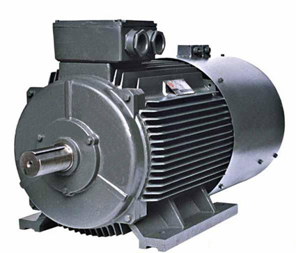 china variable speed three phase asynchronous electric