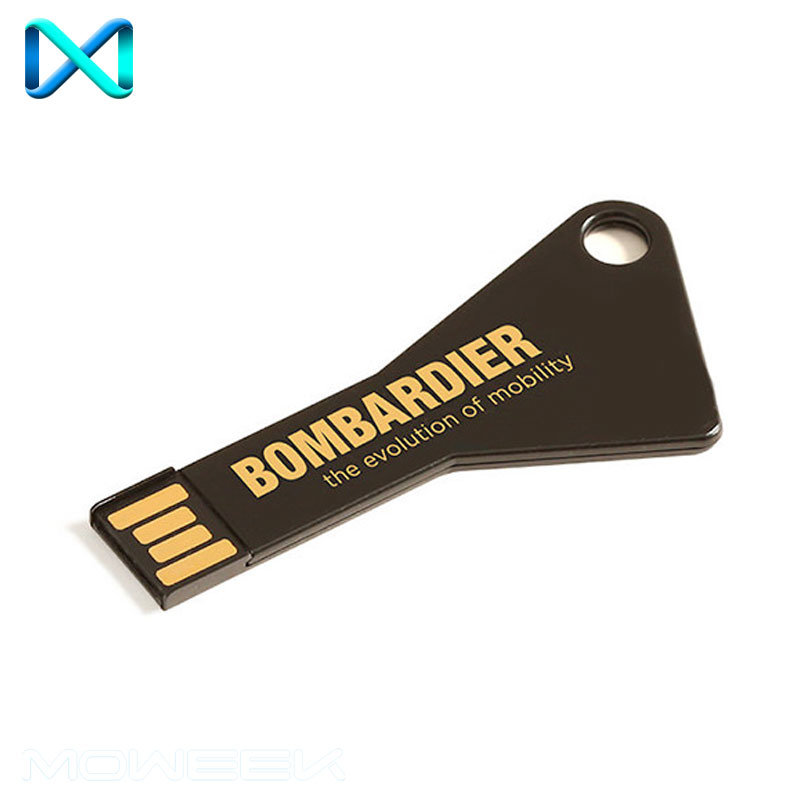 Key Shaped USB Stick Driver