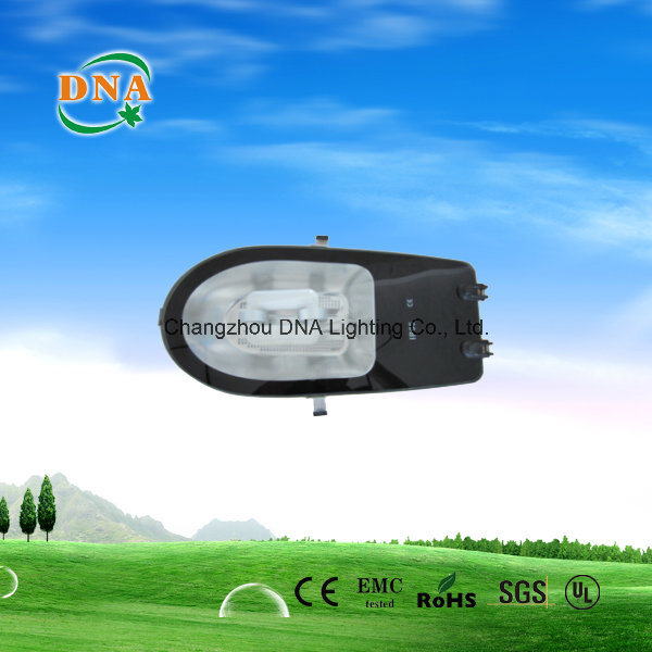 Induction Lamp Street Light