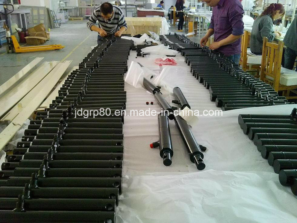 ODM Hydraulic Cylinder for Italia Farming Machinery Manufacturer
