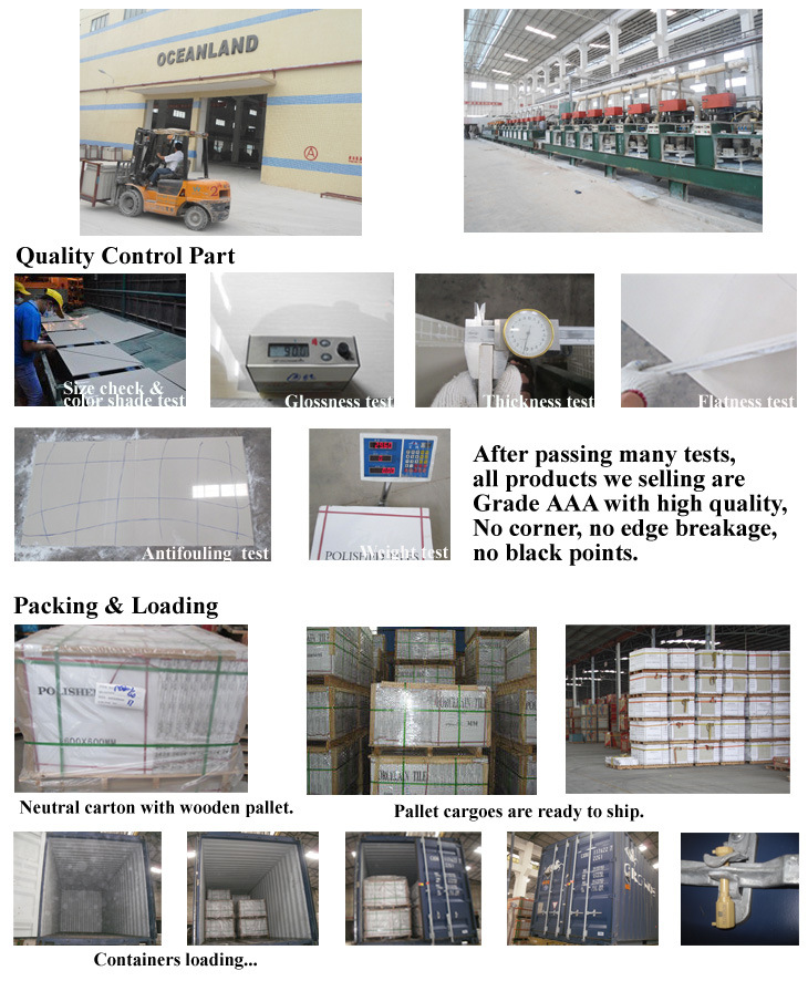 Full Polished Granite Porcellanato Tile by Foshan Factory (PG6101)