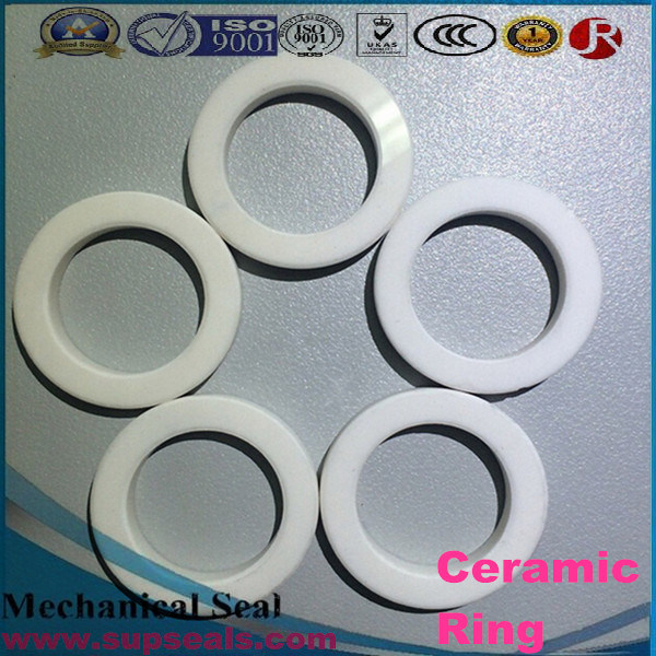 Wear Resistant Ceramic Sleeve/Alumina Ceramic Bearing Ring/Tube