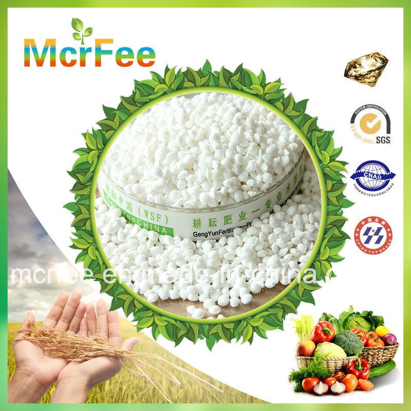 High Quality Factory 100% Water Soluble Compound Fertilizer NPK 20-20-20 Fertilizer