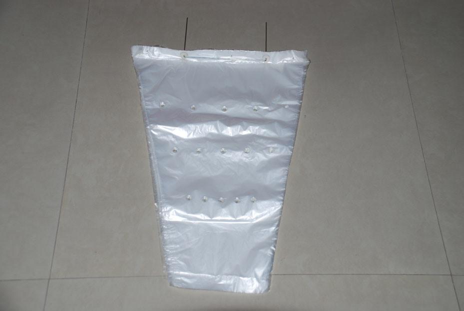 Protion Bag