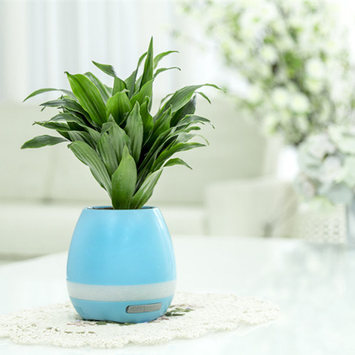 Creative Toy Air Freshener Bluetooth Speaker with Plant Aroma Crystal and Negative Ions
