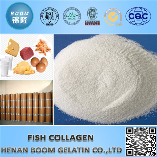 Hydrolyzed Tilapia Fish Skin/Scale Collagen Peptide
