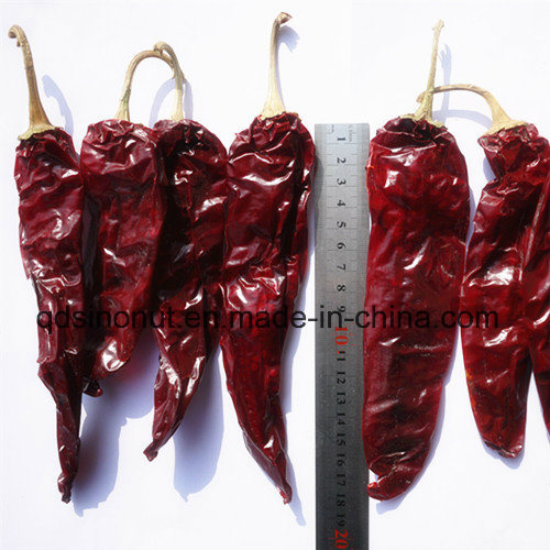 Sweet Paprika of Pods --Best Quality